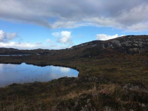 see in den highlands 3 500x375