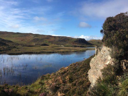 see in den highlands 500x375